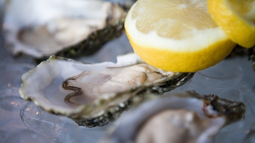 Galway's International Oyster Festival set for a funding boost