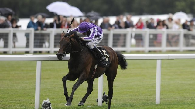Fame and Glory and Jamie Spencer will compete in the Breeders' Cup Marathon on Friday
