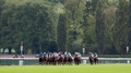 Stellar card lined up for Longchamp on Sunday