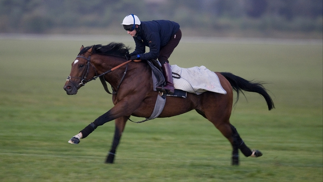 Frankel looks likely to run in the Coral-Eclipse Stakes