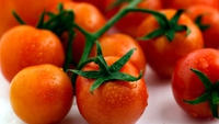 Slow Roasted Cherry Tomatoes - Allow to cool then eat warm or at room temperature.