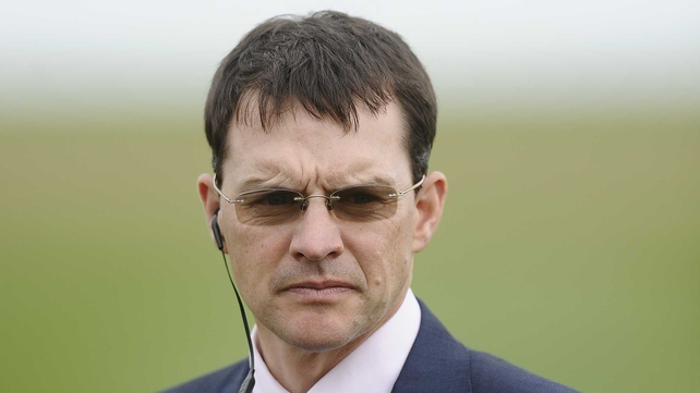 Aidan O'Brien could send Declaration Of War to the big seasonal finale at Ascot