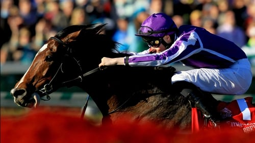 St Nicholas was an impressive winner at the Breeders' in 2011