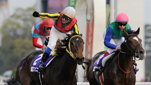 Local victory - Yasunari Iwata punches the air in delight after guiding Buena Vista to victory in the Japan Cup