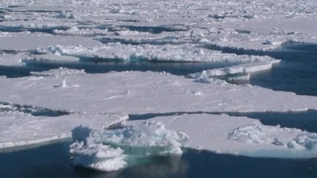 The report predicts that it is very likely that Arctic sea ice cover will continue to shrink and thin