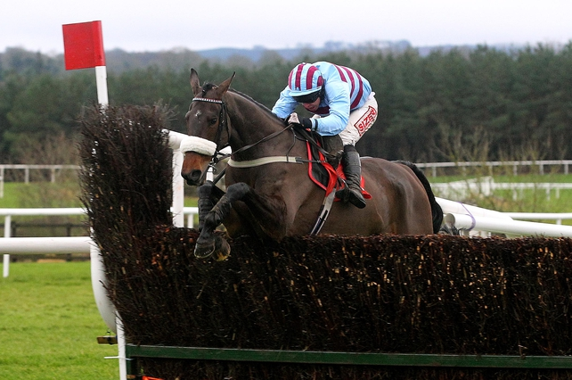Rubi Light was third on a seasonal return at Gowran Park