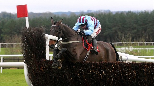 Rubi Light is a best-price 20-1 for the Ryanair Chase at the Cheltenham Festival