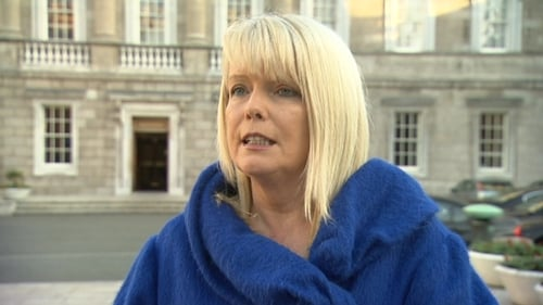 The USI said Ms Mitchell O'Connor made the comment while speaking to protesting DCU students outside Leinster House last week