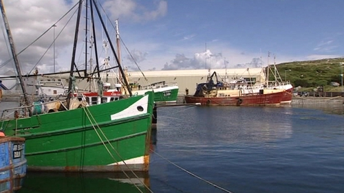 MEPs want to oblige vessels to land all fish caught
