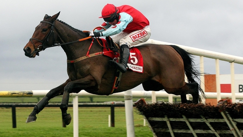 Voler La Vedette is ready to defend her Grace Hurdle title at Fairyhouse
