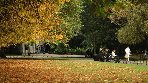The scheme would involve free usage in the city's parks