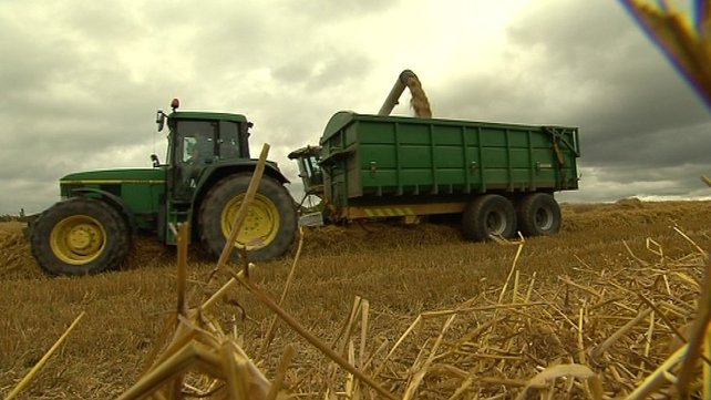 The poor weather is pushing up grain and animal feed costs so that will impact on the general income of beef farmers