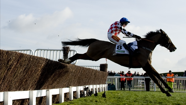 The Giant Bolster will eschew the Argento Chase in favour of the route he took to last season's Gold Cup
