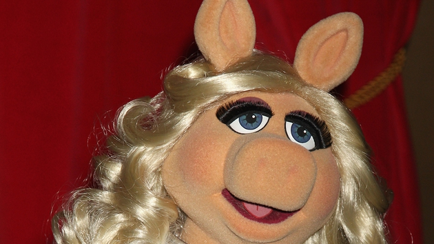 Missy Piggy - Currently shooting new movie Muppets Most Wanted