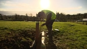 The highest number of septic tank inspection failures were in Wexford