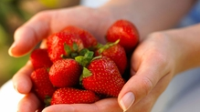 National Strawberry Week
