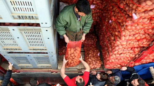 Farmers sell potatoes at cost to customers in Thessaloniki to cut out middlemen