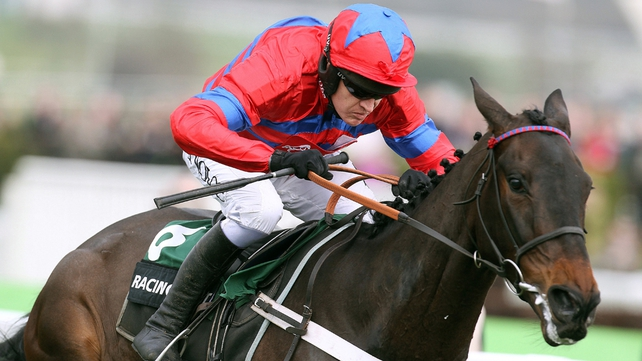 Sprinter Sacre will line up at Cheltenham next Saturday