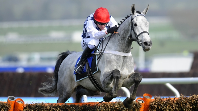 Plans for Simonsig are on hold