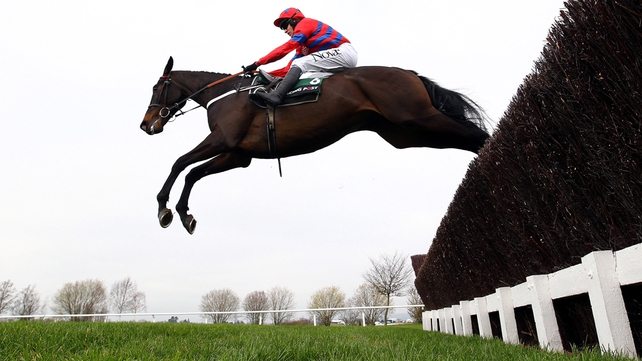Sprinter Sacre, the horse Nicky Henderson has dubbed the 'big black aeroplane',  is unbeaten in nine starts over fences