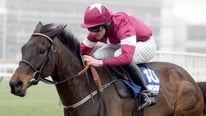 Liam Nash & Davy Russell discuss Sir DesChamps and look ahead to Cheltenham