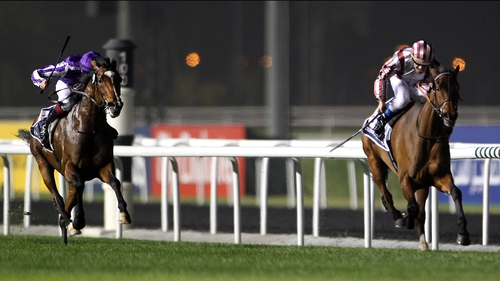 Cirrus Des Aigles (right) looks set to be the favourite for the King George stakes