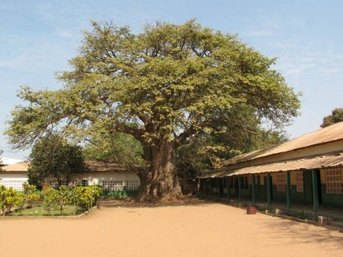 St Theresa's School, The Gambia