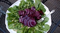 Beetroot, Orange and Watercress Salad with Toasted Walnuts - A fresh tasting and tangy salad with plenty of body and crunch.