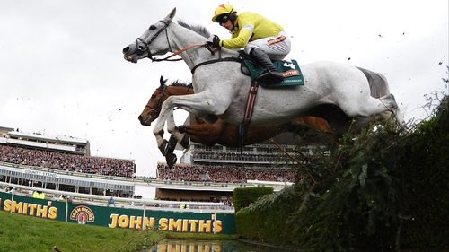 Neptune Collonges was retired by owner John Hales after triumphing in the Aintree spectacular