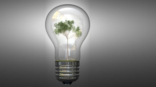 SEAI: 27% of electricity used in Ireland comes from renewables