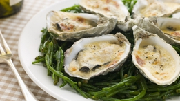 Oysters with Champagne Sabayon | Trish Deseine