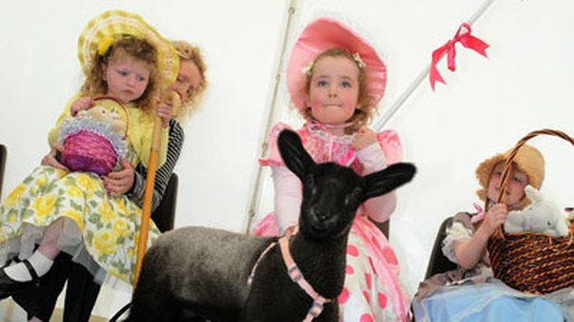 Little Bo Peep competition