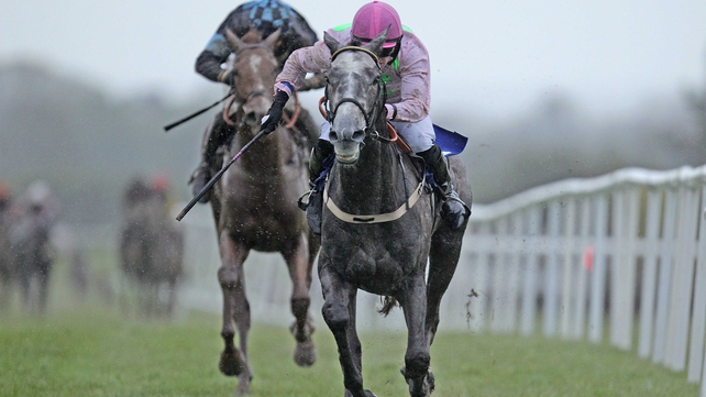 Champagne Fever will be part of the line-up in the Slaney Novice Hurdle