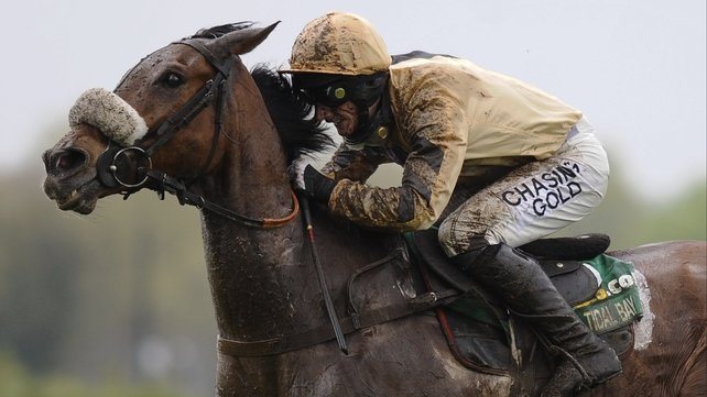 Tidal Bay will not be ready for the Hennessy Gold Cup at Leopardstown