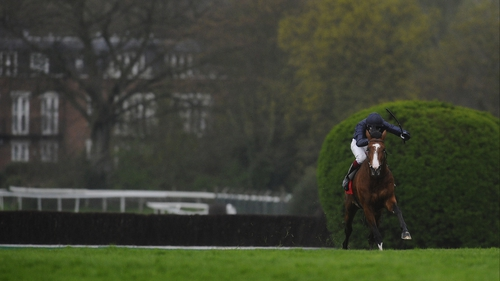 Imperial Monarch, brought wide all the way by Joseph O'Brien, landed the Sandown Classic Trial