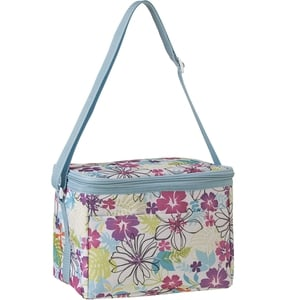 Personal cooler bag €4 in store end May