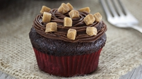 Chocolate fudge cupcakes - A special treat from Dr Oetker.