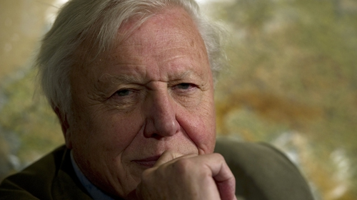 """Attenborough - """"The Natural History Museum has always been a special place for me"""""""