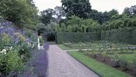 Experience some of Ireland's award-winning gardens
