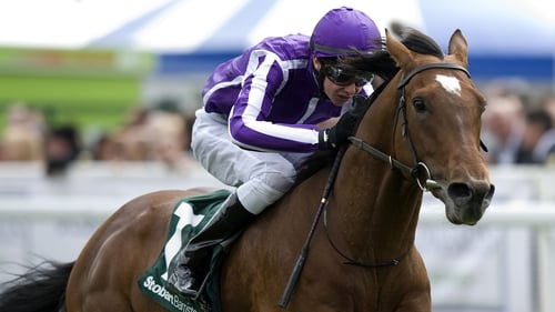 Joseph O'Brien could partner the hugely-promising filly Kissed at Chantilly on Sunday