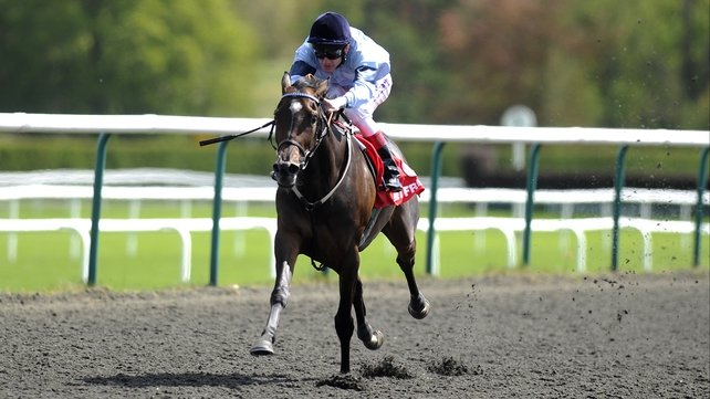 Johnny Murtagh partnered Miss Lahar to victory in the Dark Angel European Breeders Fund Sweet Mimosa Stakes