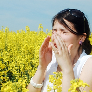 Don't get bogged down by the symptoms of hay fever