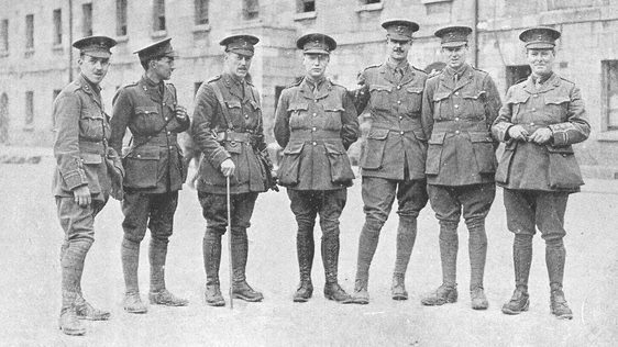 The Irish Brigades In The First World War