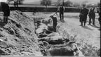 Burying cavalry mounts killed in battle, Belgium, 1914. Courtesy of Library of Congress LC_B2_3249_11