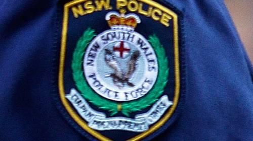 Some of the most senior police officers in New South Wales will give evidence
