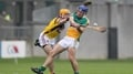 Offaly withstand Wexford fightback