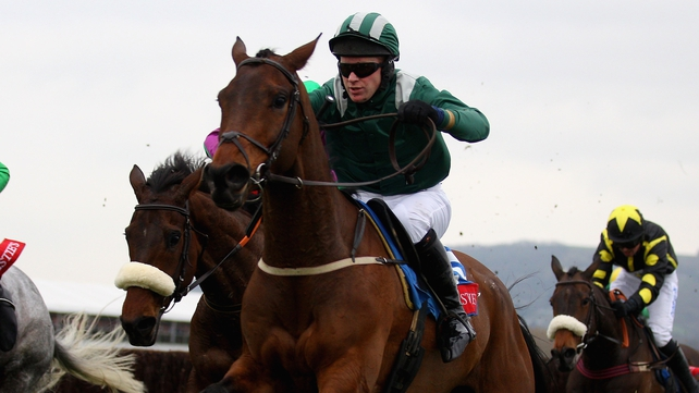 Salsify is hoping for a third win in-a-row at Cheltenham