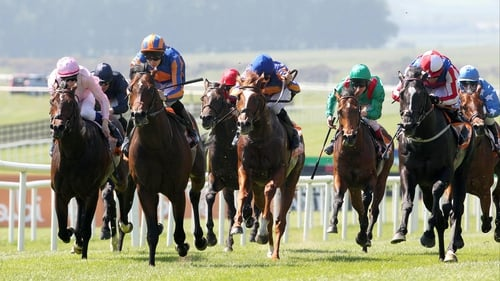 Hermival (right, blue with white stars) was found to be sore after this Irish 2000 Guineas disappointment