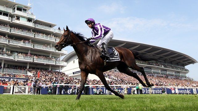 Camelot has made a good recovery according to trainer Aidan O'Brien
