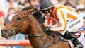 Buick to ride Ortensia in July Cup